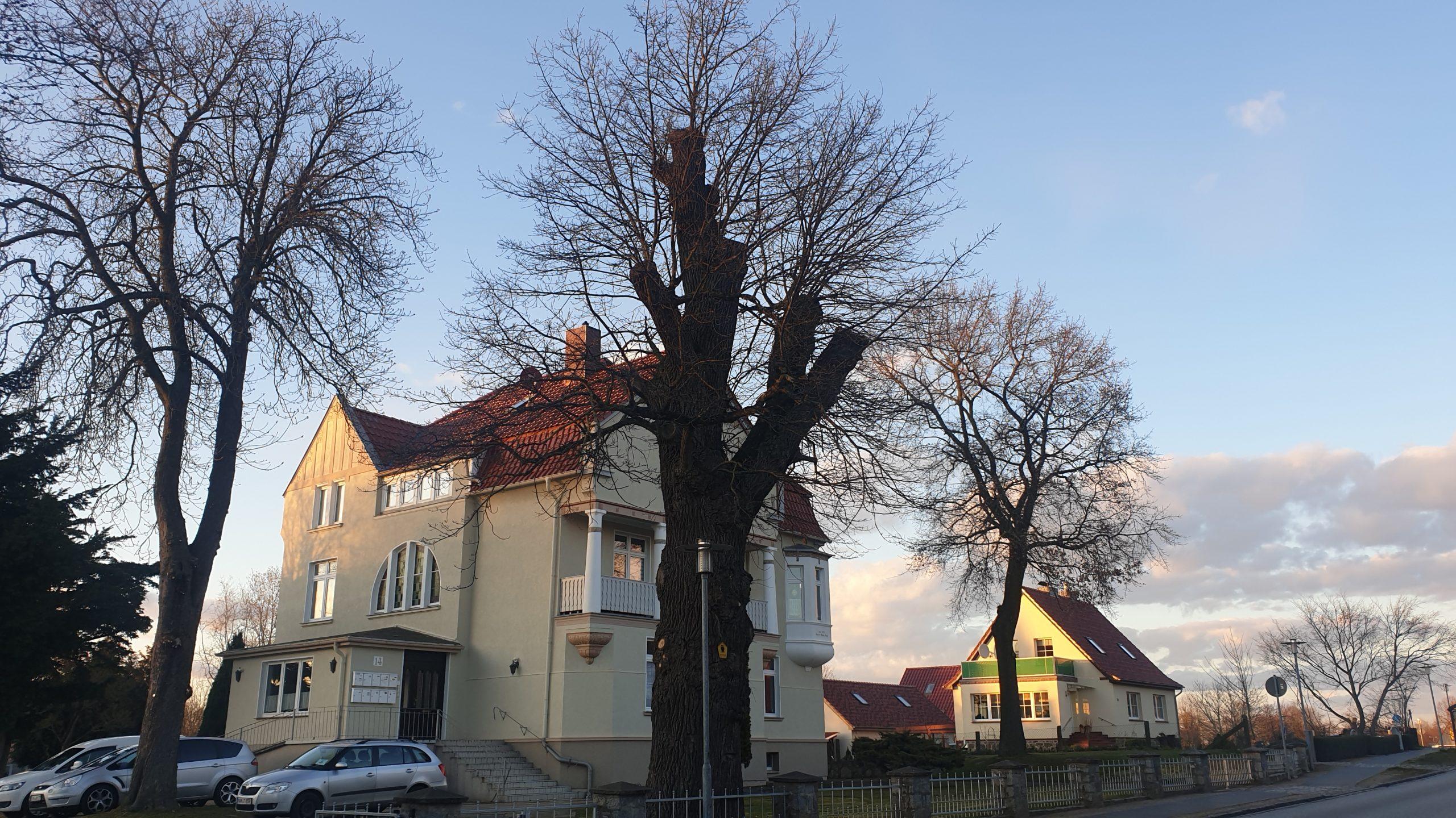 Eiche Villa Sassi